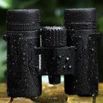 Análisis de los binoculares compactos Wingspan Optics Spectator 8×32