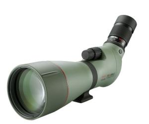 Análisis del alcance de la detección: Kowa Prominar ED TSN880