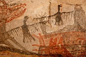 ¿Qué pasatiempo comenzó hace 40.000 años? ¡Mirando pájaros!